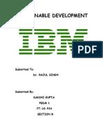 Ibm - Sustainable Dev.