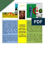 La Kabylie entre les libertaires et les islamistes