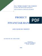 PROIECT Asigurari de Credite 2007