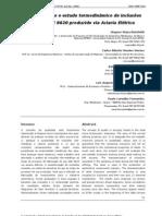 Caracterização e estudo termodinâmico de inclusões