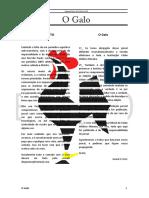 Jornal O Galo - 1ª Edição