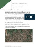 Marcelo Benaci - Ecologia Urbana