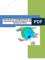 tesis_contaminacion_ambiental