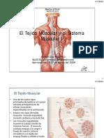 El Tejido Muscular y El Sistema Muscular I