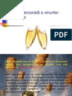 Analiza senzorială a vinurilor spumante