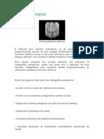 Radiografia Periapical Odontológica