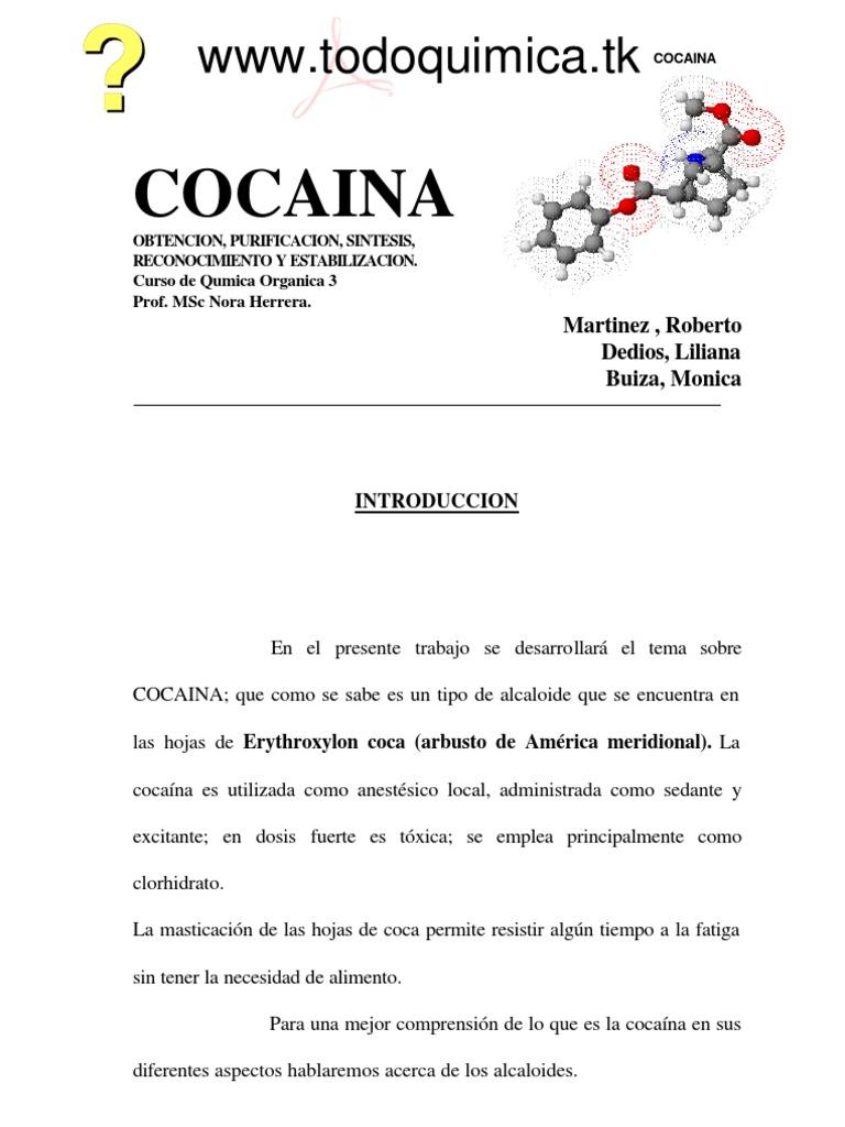 Manual Sobre La Cocaina Obtencion Purificacion,Sintesis ...