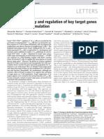 Foxp3 Occupancy and Regulation of Key Target Genes