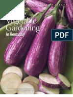 Home Veg Garden Id128
