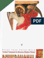 Vechiul Testament în tâlcuirea Sfinților Părinți. Deuteronom - Pr. Ioan. S. Usca