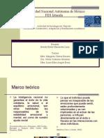 Pensamiento Constructivo adaptación y rendimiento UNAM  Brenda Hernández