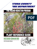 Landscaping Plant Guide