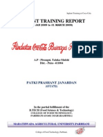 Inplant Training Report-Coke2009