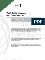 Wan Technolgy