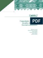 CapaciTecnica_MFC