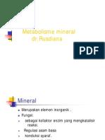 Bbc115 Slide Metabolisme Mineral