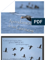 Apr End Amos de Los Gansos