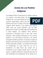 (Maria) Los Derechos de Los Pueblos Indígenas ensayo