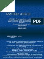52915423 Anatomia Urechii Curs