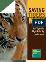WCS Saving Tigers Now
