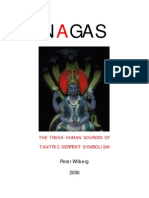The Legend of Annu-Nagi Mythology and History of Naga People