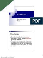citocininas1