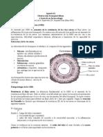 Apunte41 Obstrucción bronquial difusa