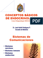 ConceptosBasicosEndocrino