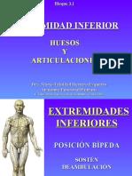 3.1 Miembro Inferior Huesos y Articulaciones