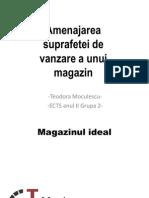 Amenajarea Suprafetei de Vanzare a Unui Magazin