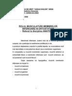 Rolul Musculaturii Membrului Inferior in ism