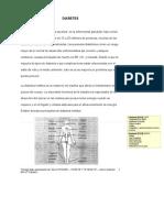 ImmunotecDiabetesSP