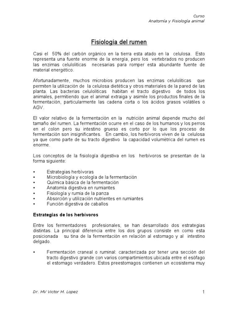 Fantástico Anatomía Animal Y Hojas De Trabajo Fisiología Componente ...