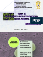 Tema 3 Mecanismos de Patogenicidad Flora Normal