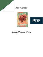 1954 Rose Ignee