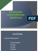 Clase_2_-_Anatomia_y_Semiologi (1)