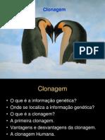 Clonagem - 11º BG