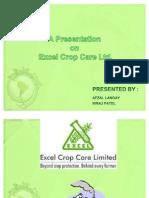 Final Presentation on Excel Ltd.-latest