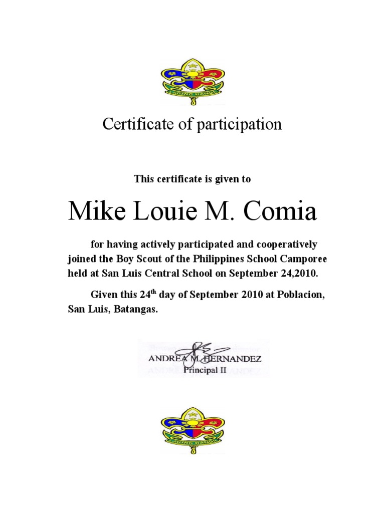 Certificate of ParticipationGSP – Sample Certificate of Participation