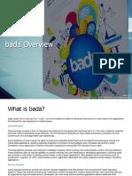 Bada Overview