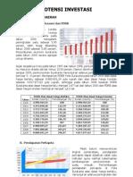 potensi investasi 2011