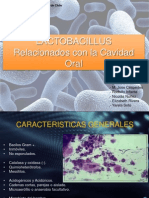lactobacilos en la cavidad oral