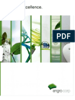 Engro Corporation Annual Report 2010_SEARCHABLE