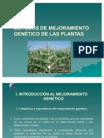 mejoramiento plantas