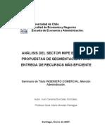 Analisis Del Sector MIPE U de Chile