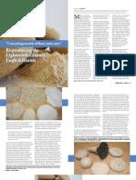 Biscuit Article JOTEA2011