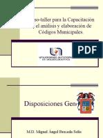 Organizacion y Funcionamiento Del Gobierno Municipal
