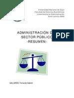 Resmen Final Sector Publico