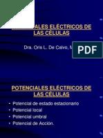 [Telmeds.org]_2._potenciales_elctricos