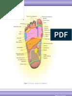 Foot&Hand Map Reflexo